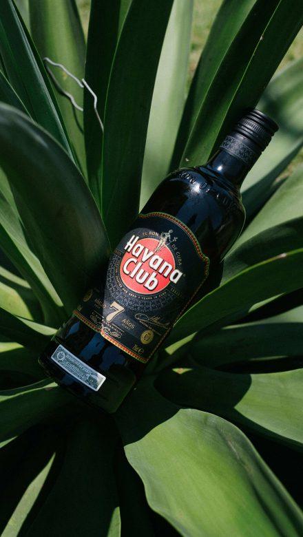 Havana Club 7 Flasche Moodbild
