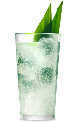 Havana Club Verde Pandan Highball Rezept